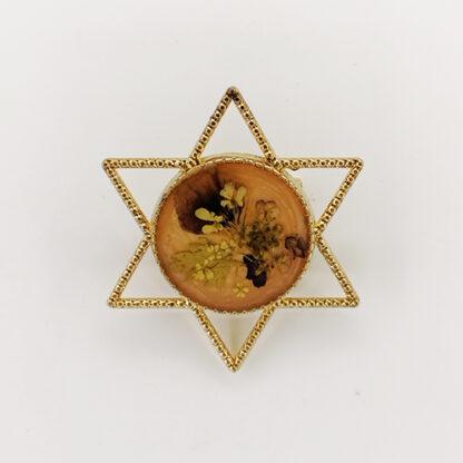 spilla 12 stella