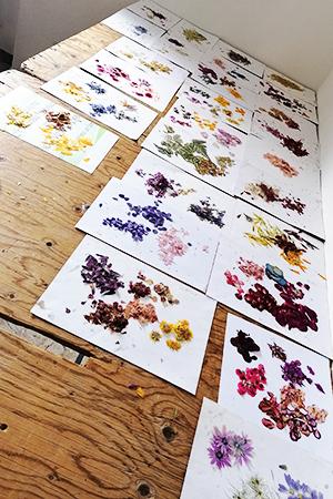 il tavolo di fiori sparsi per essere lavorati